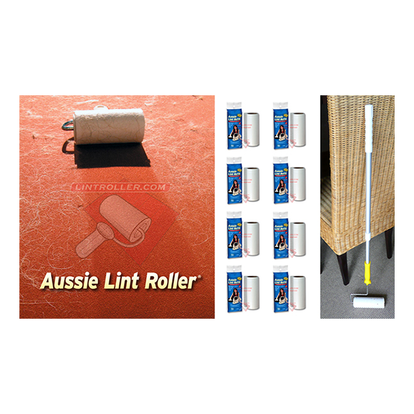 Carpet Roller and Pole