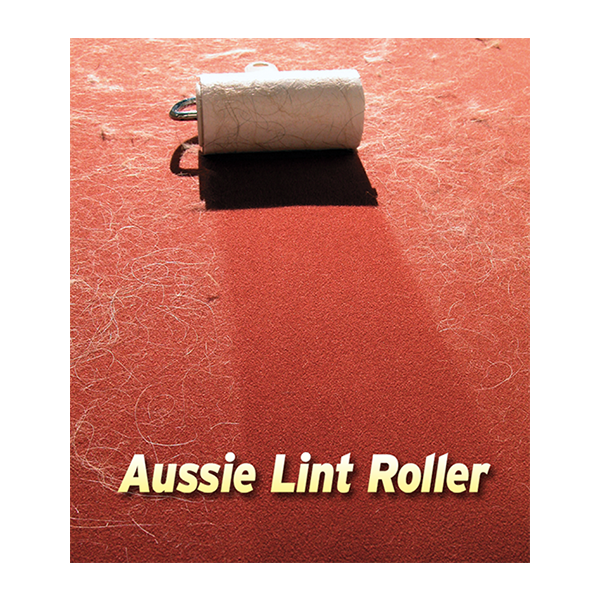 best-lint-roller-demo